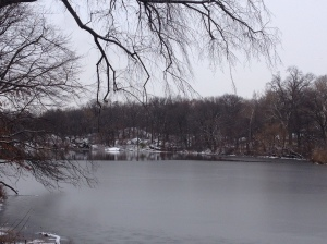 The Lake was in a semi frozen state