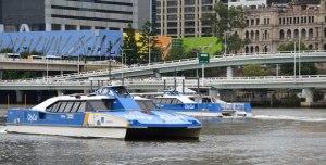Brisbane's CityCats